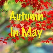 Autumn To May