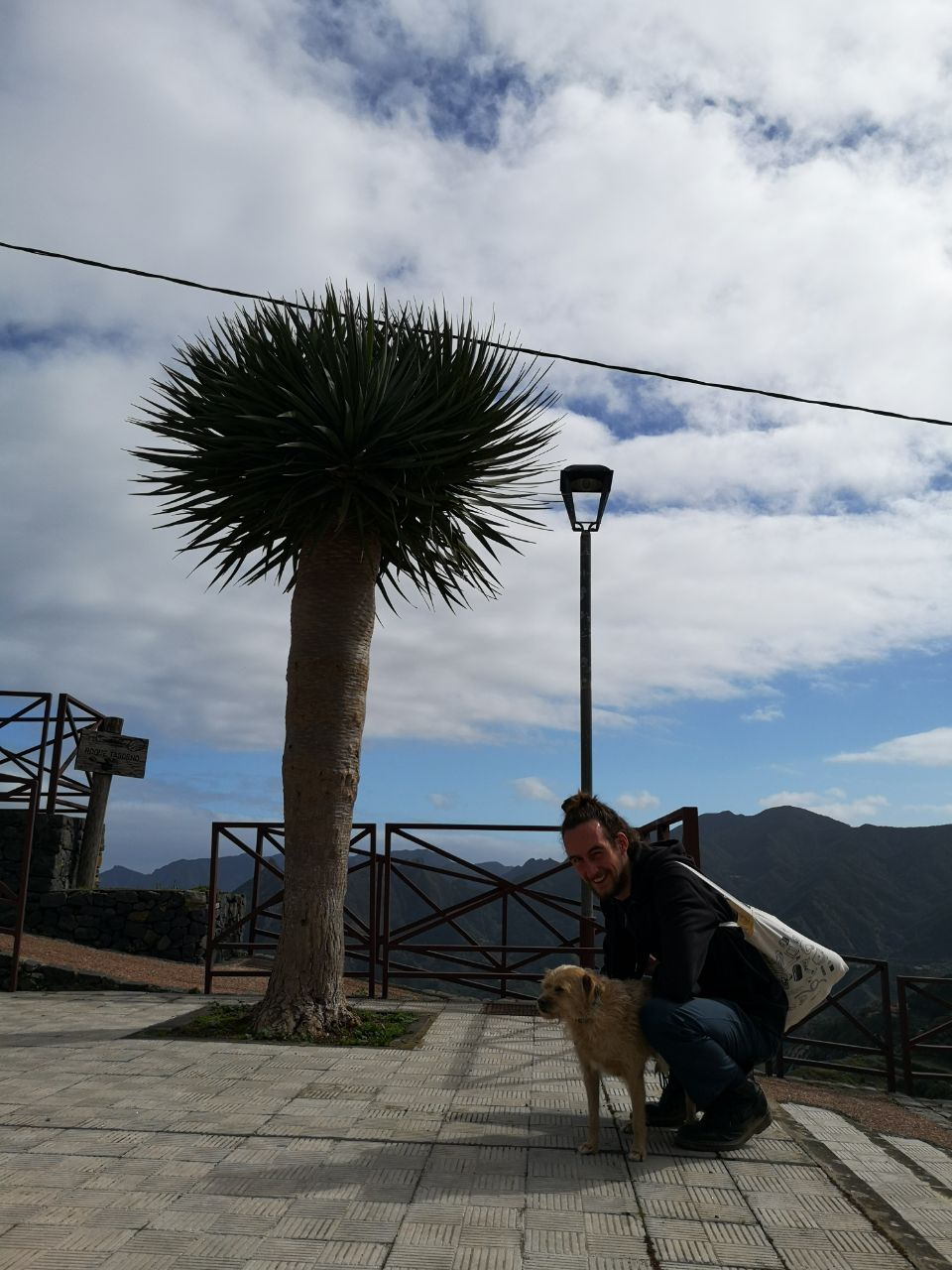 Sander with a dog in the mountains