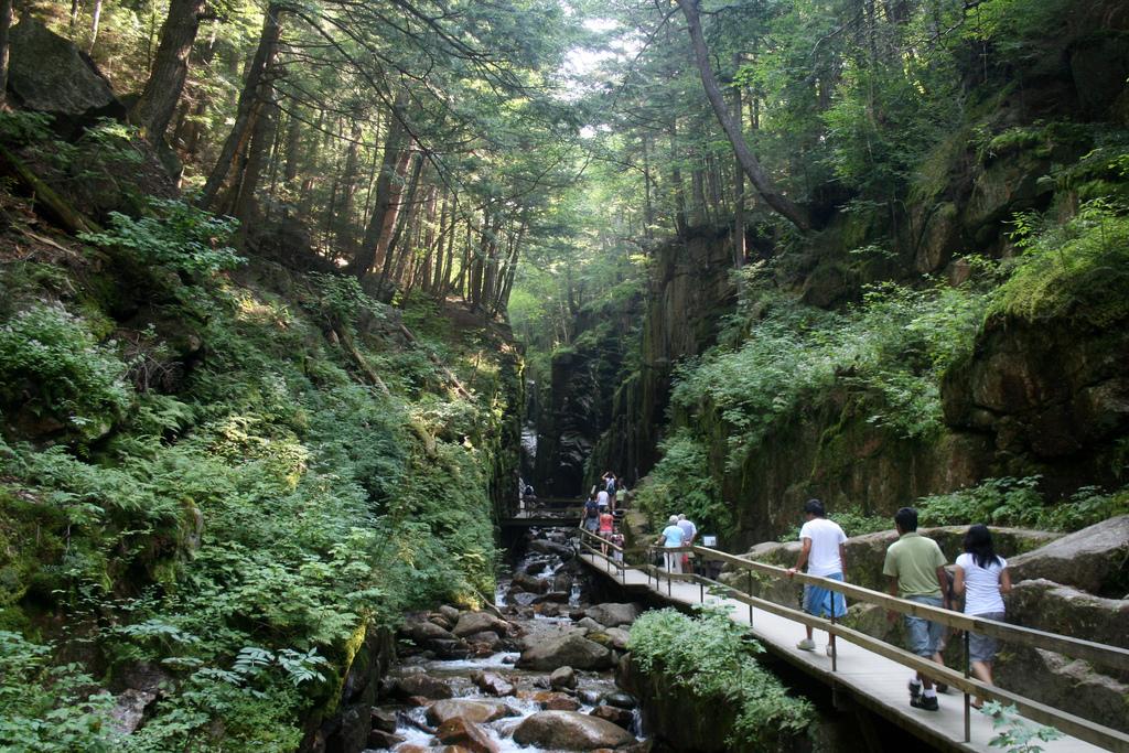 Franconia Notch State Park - Flume Hike | woodleywonderworks | Flickr
