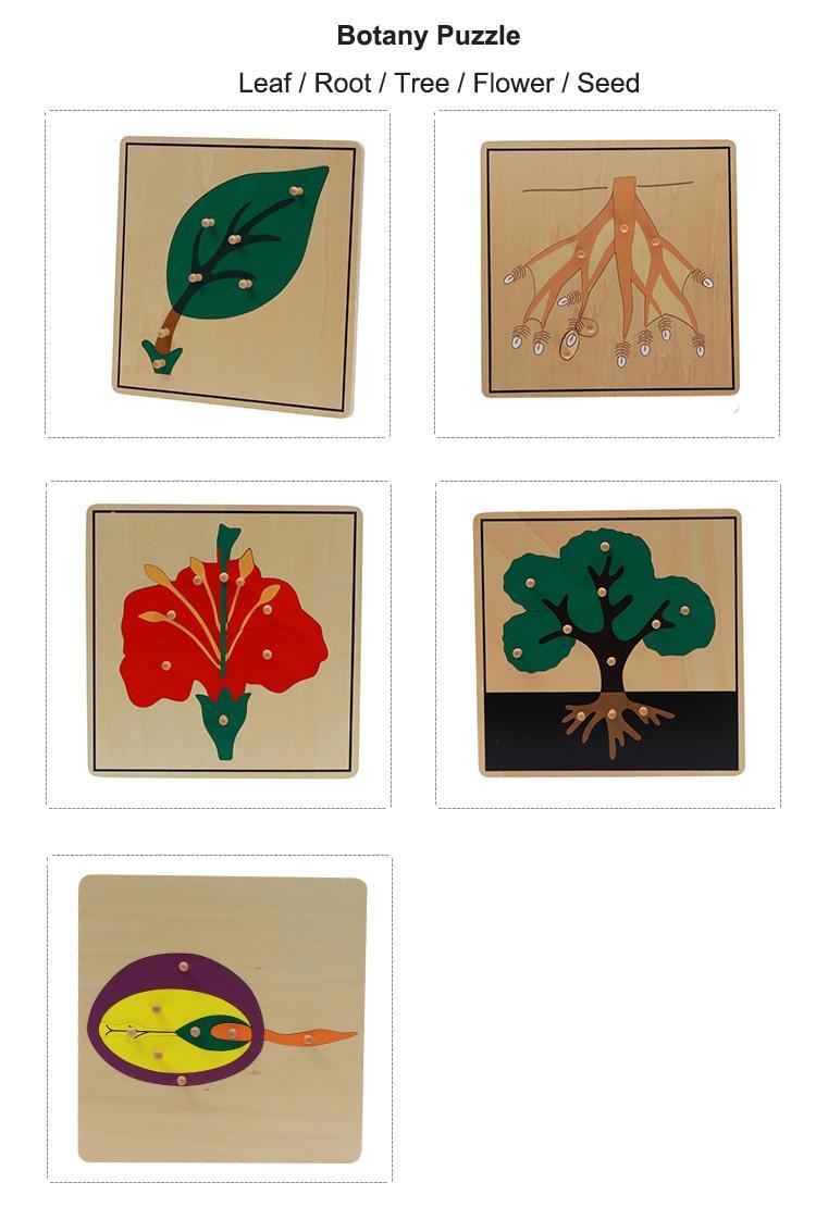 puzzle botanique montessori puzzle en bois activité