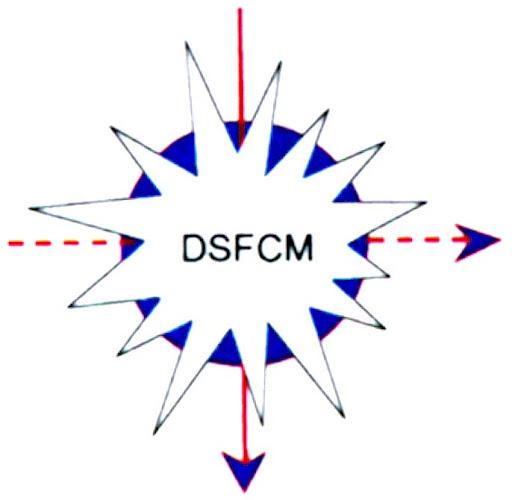 Dansk förening för flödescytometri