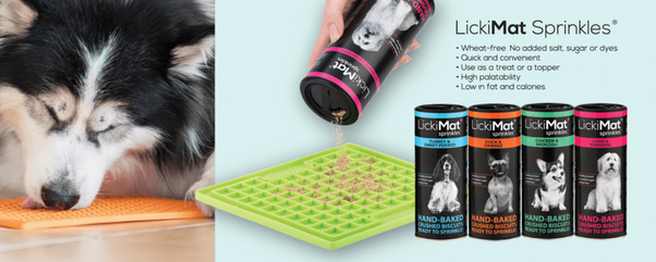 Make Products for Pets