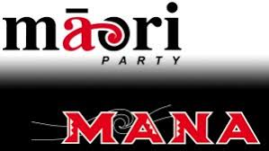 Image result for Mana party