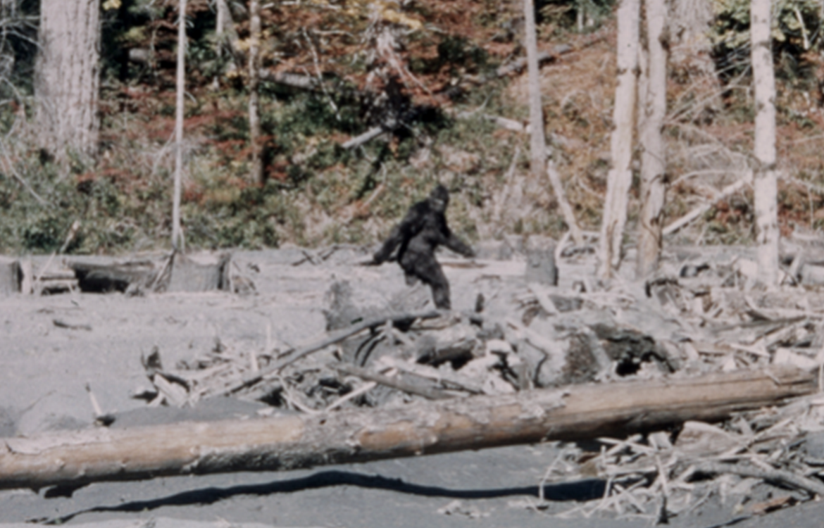 Bigfoot Photo.png