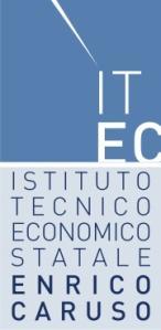 """I.T.E.S """"Enrico Caruso"""" - Napoli"""