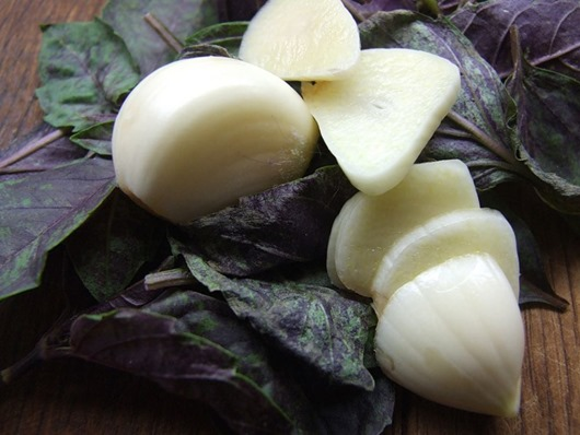 garlic health 12