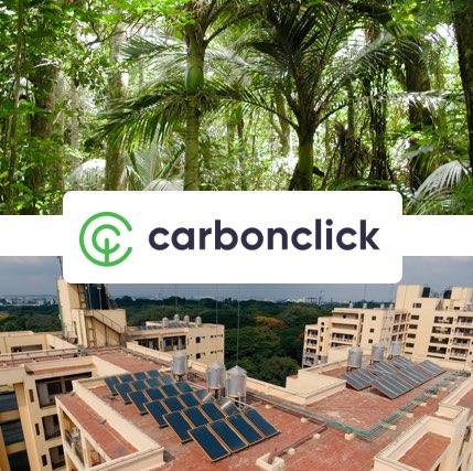 Naturecan Carbon Click