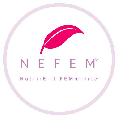NEFEM.png