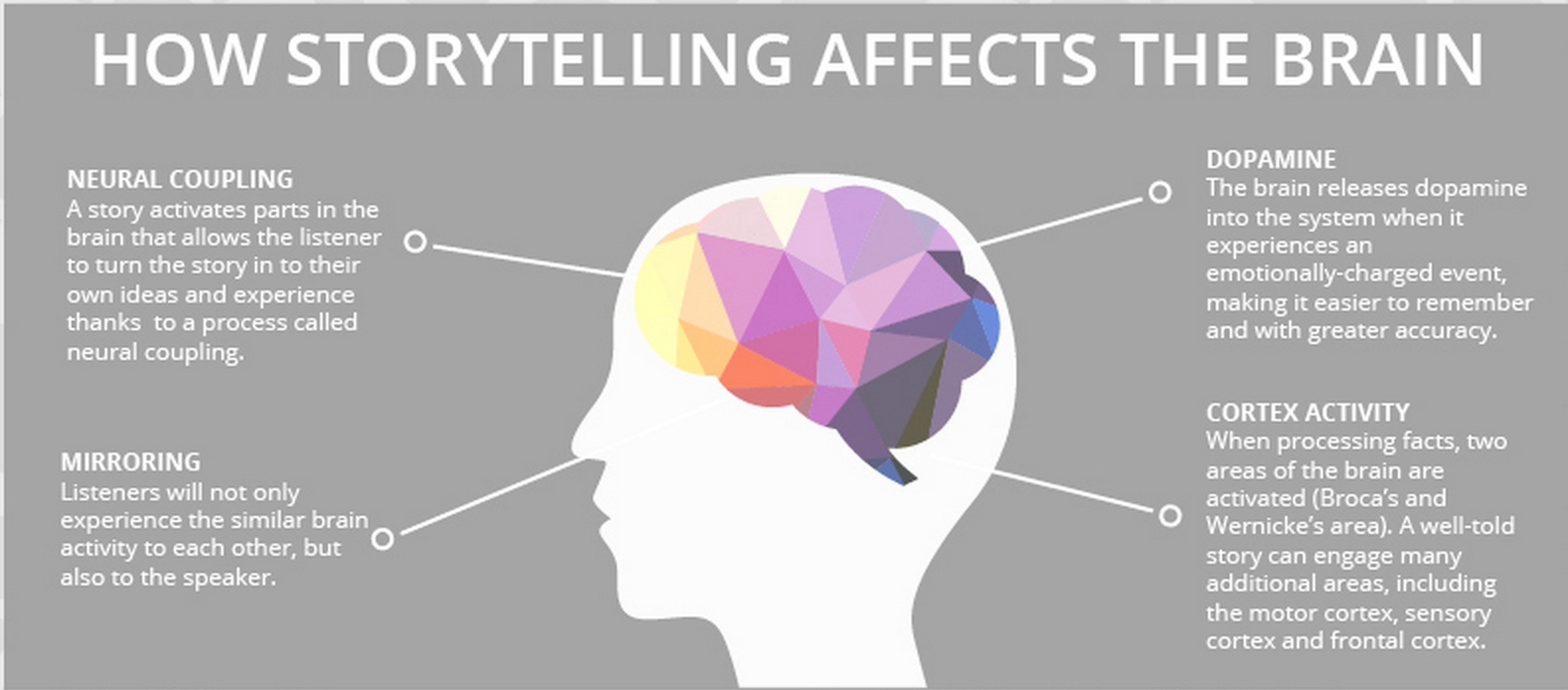 social-media-storytelling-effects