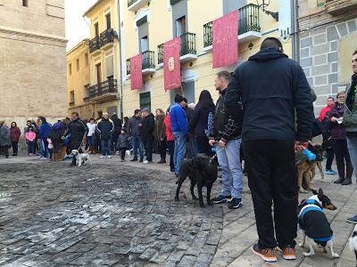 https://1.bp.blogspot.com/-VOXCbKbFTpA/XDJZBho8TdI/AAAAAAAAHpc/3CbZOr4XJWsToX0o0xjEil_xrdtMMV9fwCEwYBhgL/s400/BringFido_Blessing_Spain2.JPG