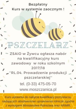 KKZ RL.04 Prowadzenie produkcji pszczelarskiej
