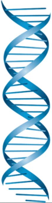 DNA Symbol.JPG
