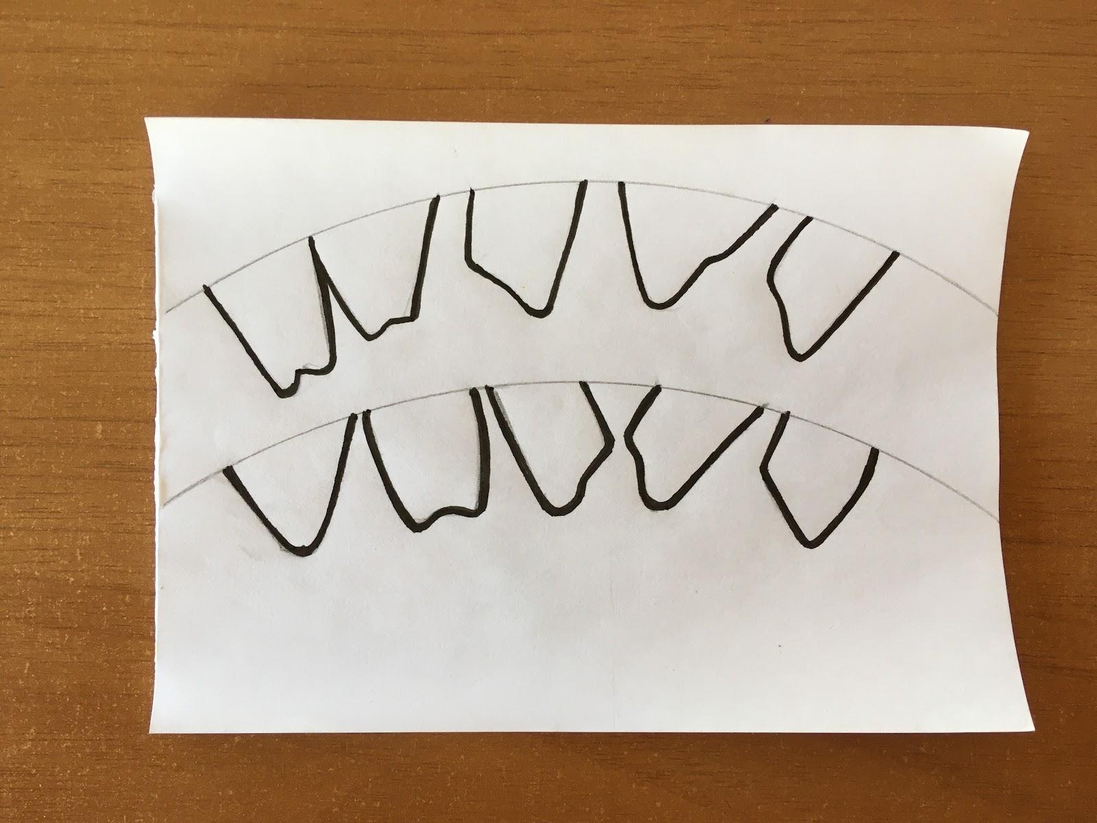 Dibujo de los dientes dispuestos en el mismo arco de circunferencia que se utilizó para el cono.