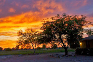 Sunset views for 2 acre horse property in San Tan Valley