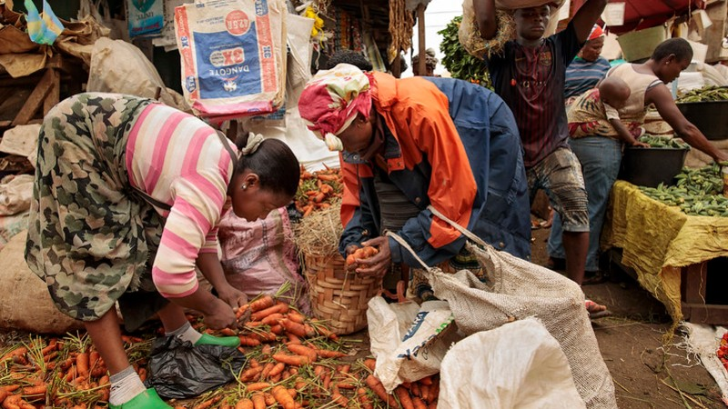 UN report: Countries at all income levels waste food
