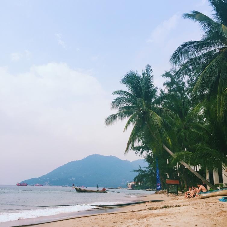 A beach with palm trees and a mountain in the background  Description automatically generated with low confidence