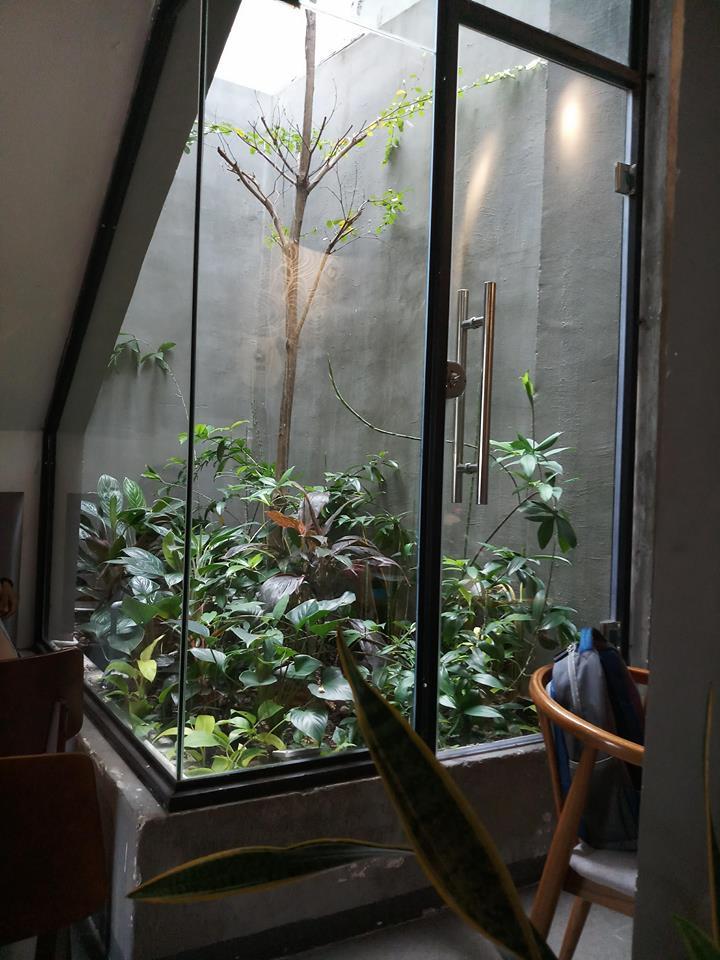 Trong nhiều cây xanh trong và hoặc trước nhà là cách mở cung tài lộc, giúp chủ nhân trở nên thành công hơn.