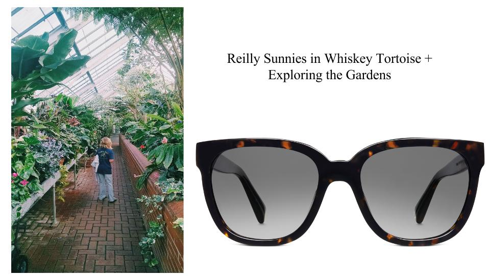 Warby Parker 3.jpg