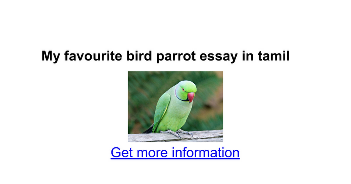 my favourite bird parrot essay in tamil google docs