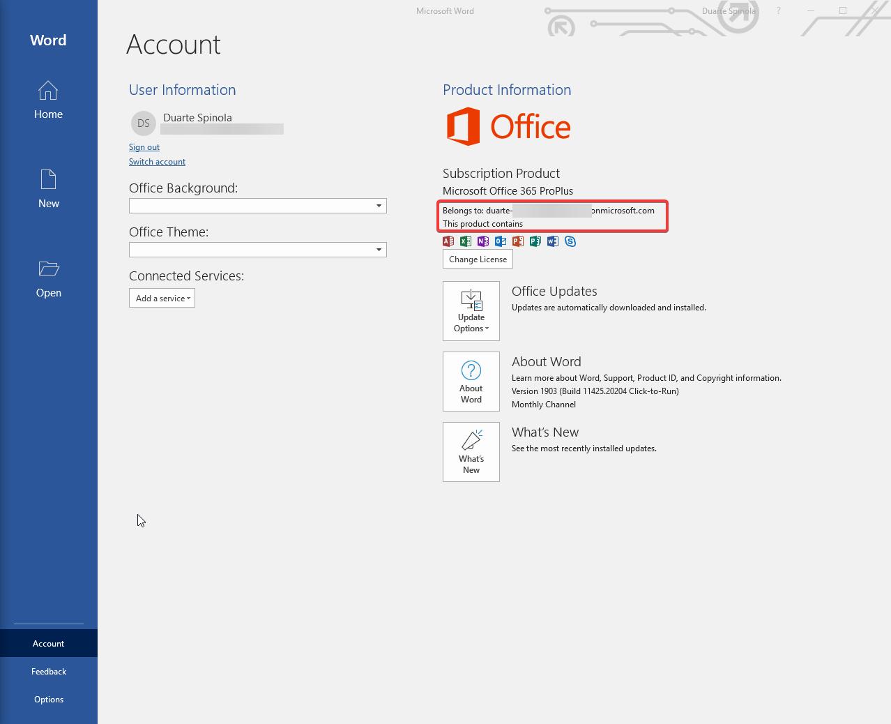 Microsoft Word autenticação / registo