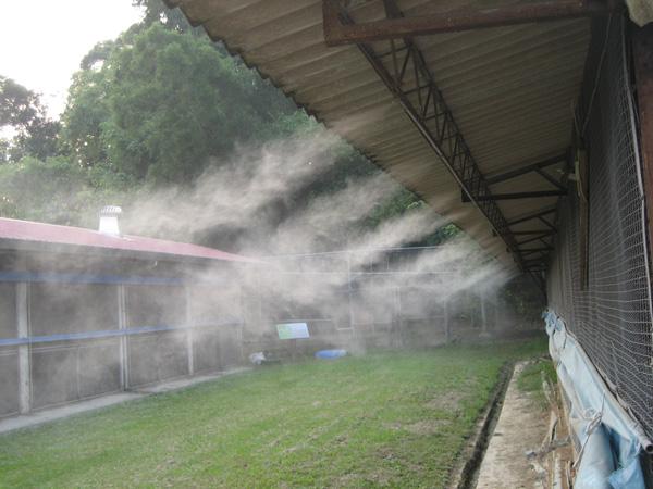 Kinh nghiệm sử dụng máy phun sương hiệu quả