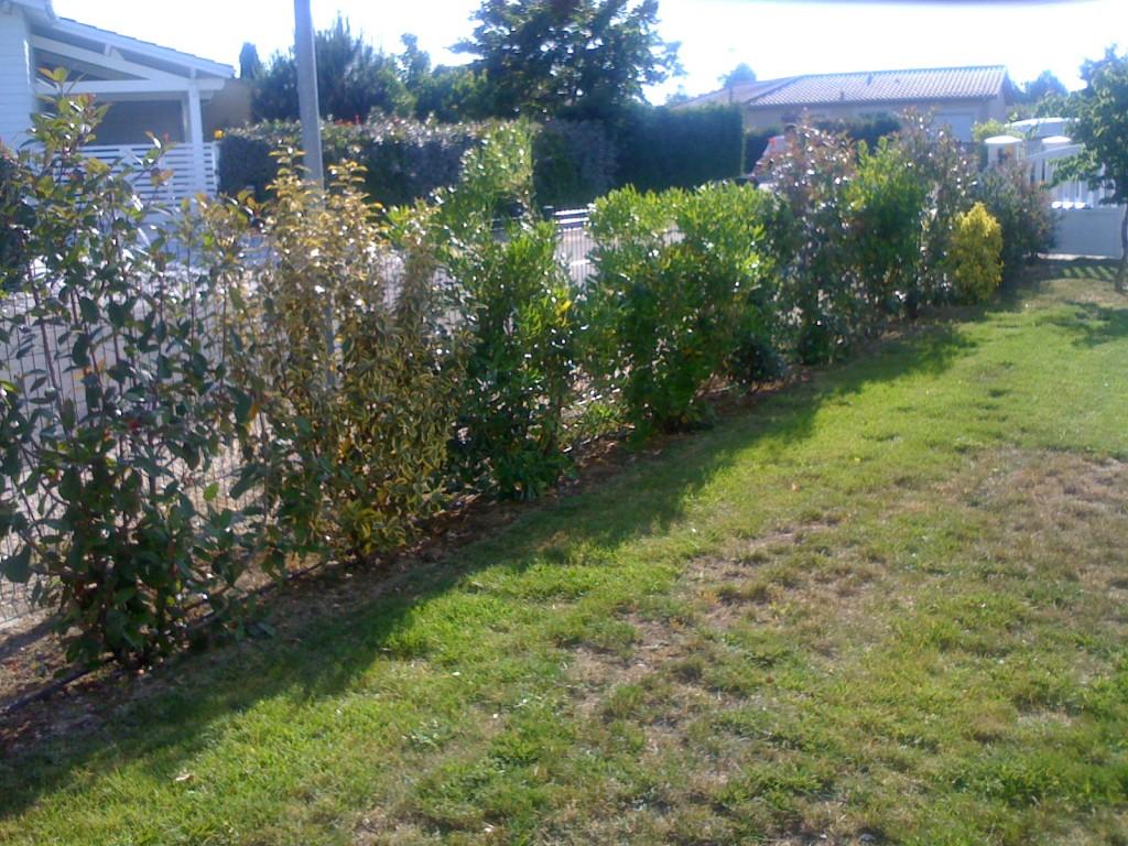 Am nagement de jardin paysagiste bordeaux - Arrosage gazon apres semis ...