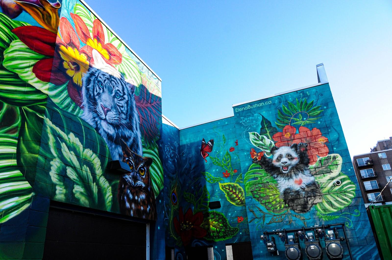 Des animaux dessinés sur des façades