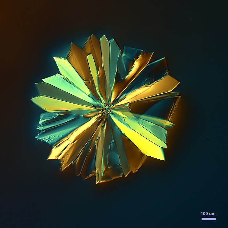 Polarized Light: sample crystallized from methanol