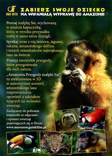 Tył ulotki filmu 'Amazonia. Przygody Małpki Sai'
