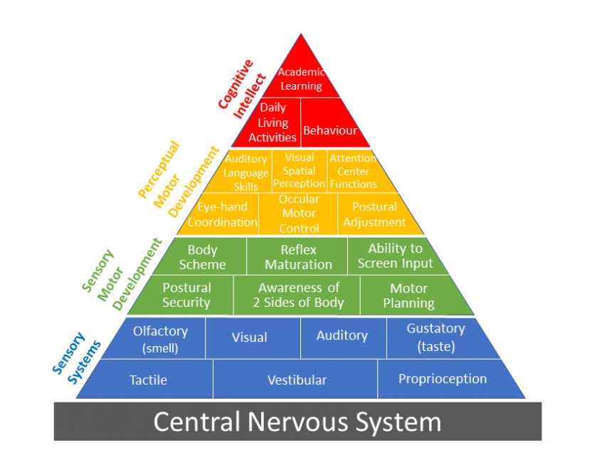 http://northshoreot.com/wp-content/uploads/2019/01/Pyramid-of-Learning-e1546513283649-846x667.png