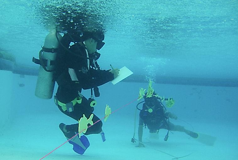 VSU Biology and Marine Biology Contact