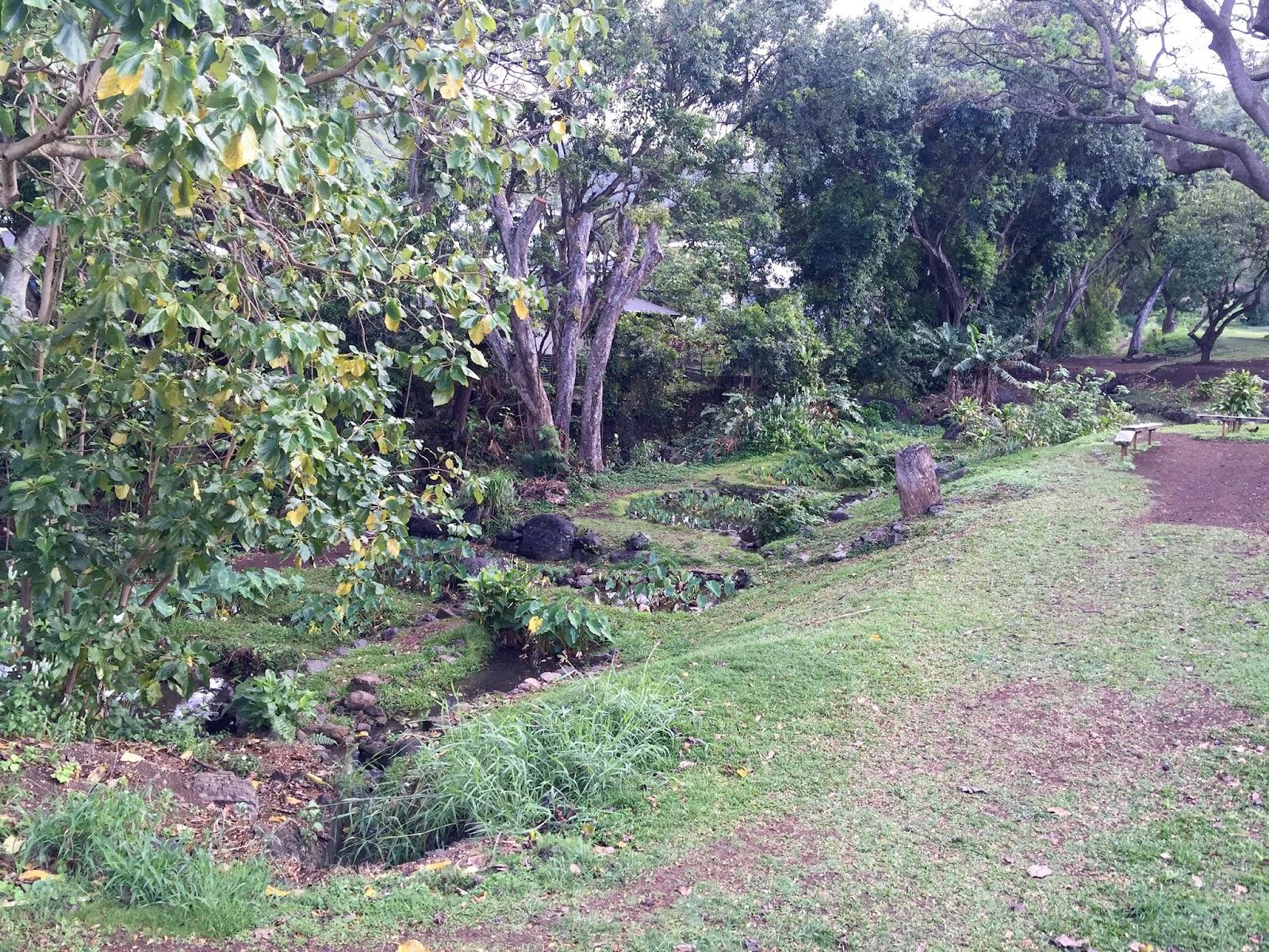 Anuenue5 Gardens and Fish Ponds.jpg