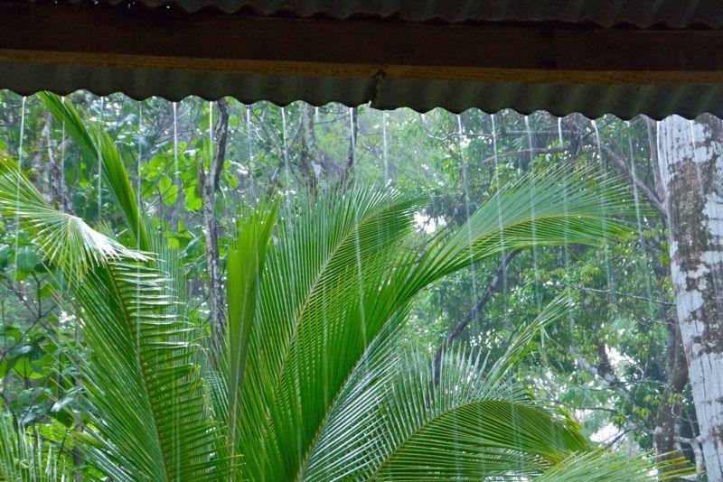 25_panama_sc_rain.jpg