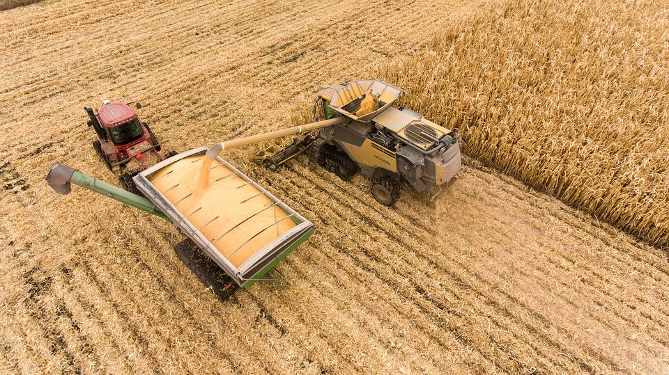 colheita de lavoura