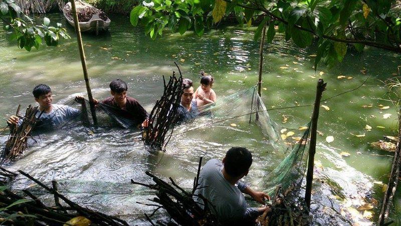Bắt cá tại vườn trái cây Chín Hồng