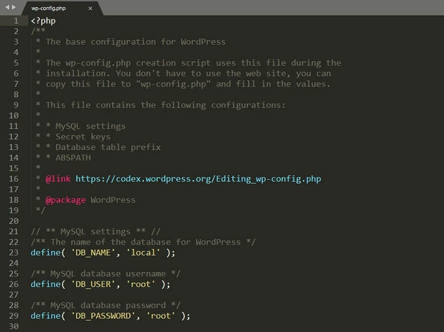 Editing a wp-config.php file.