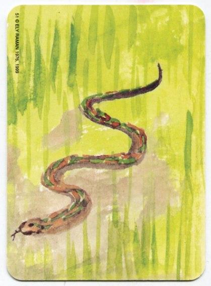 Карта из колоды метафорических карт Ох: змея