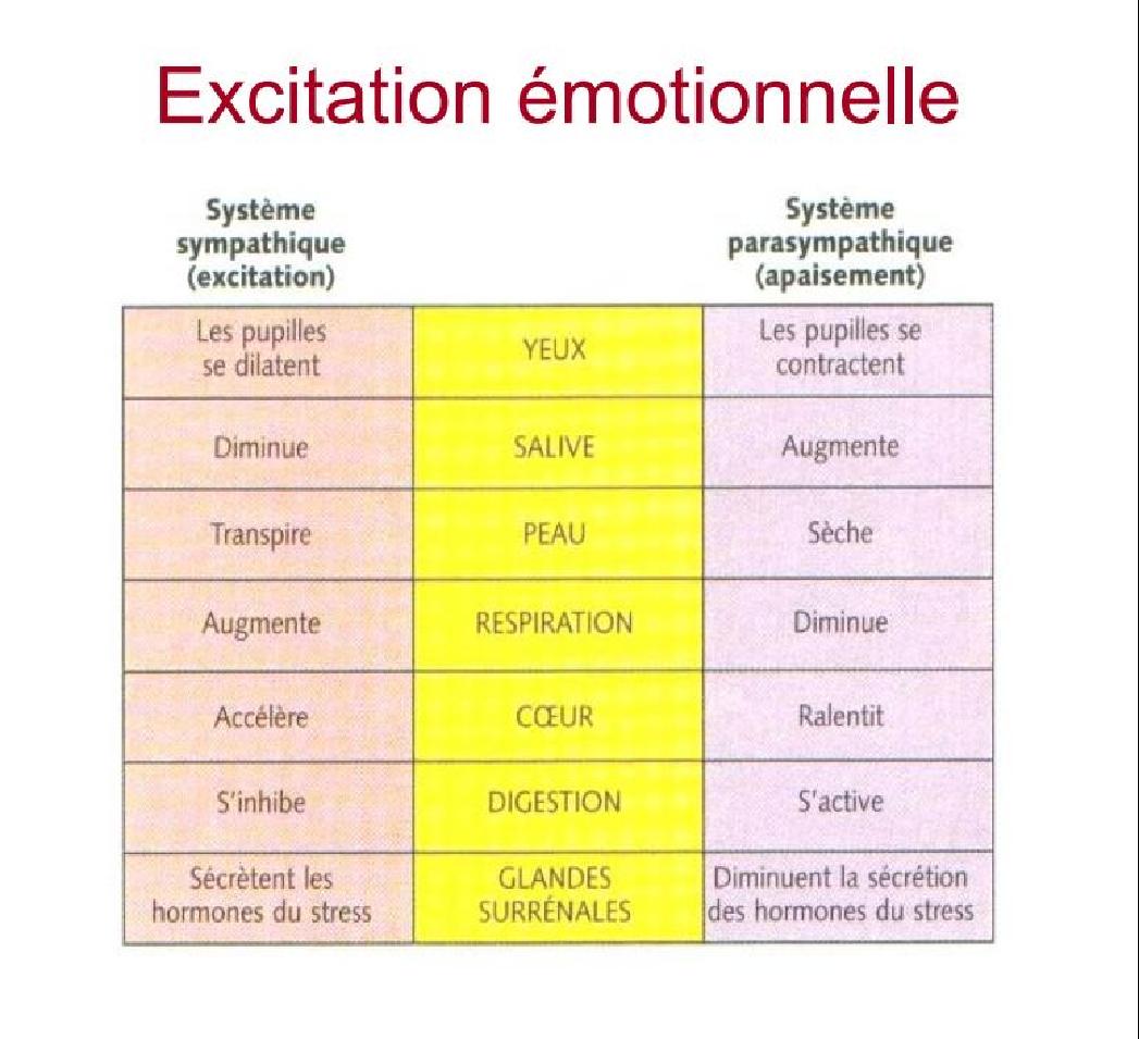 Les Reactions Liees Aux Emotions Les Emotions