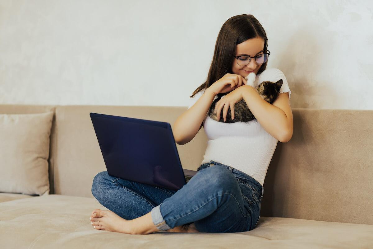les chats ne sont pas des animaux partageurs