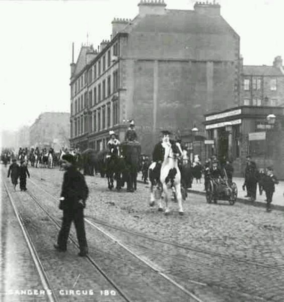 Leith Walk tram rails with elephant.jpg