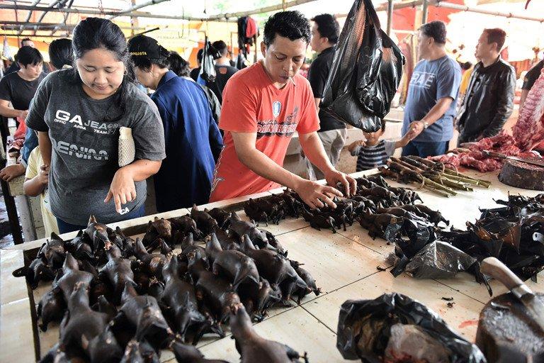 Chợ động vật