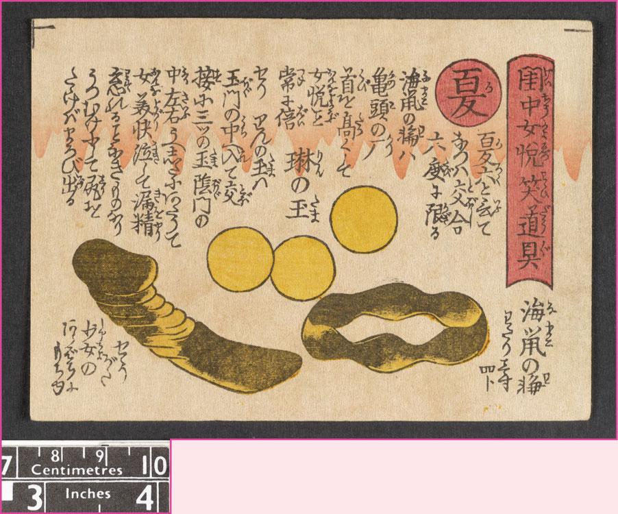 Pagina din Shunga manual erotic