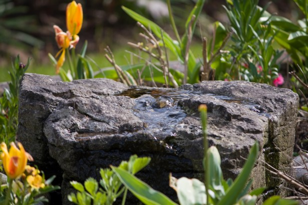 Image result for garden water feature