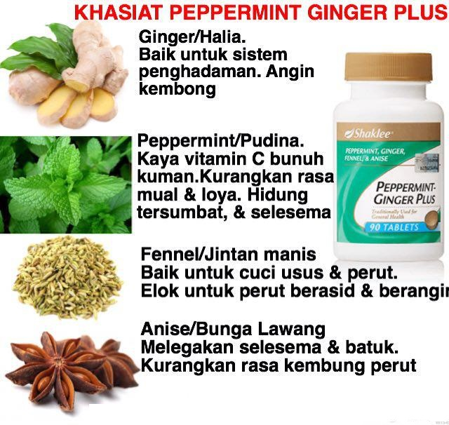 Image result for peppermint ginger plus shaklee cara makan
