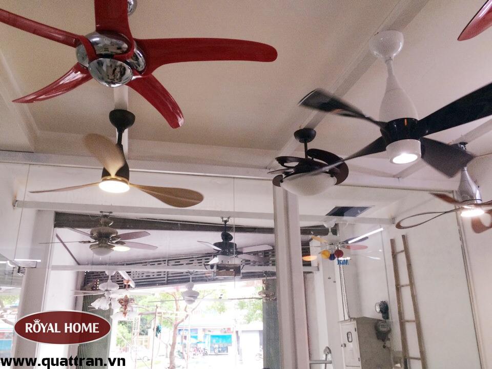 Quạt trần đèn chùm tô điểm thêm cho ngôi nhà của bạn