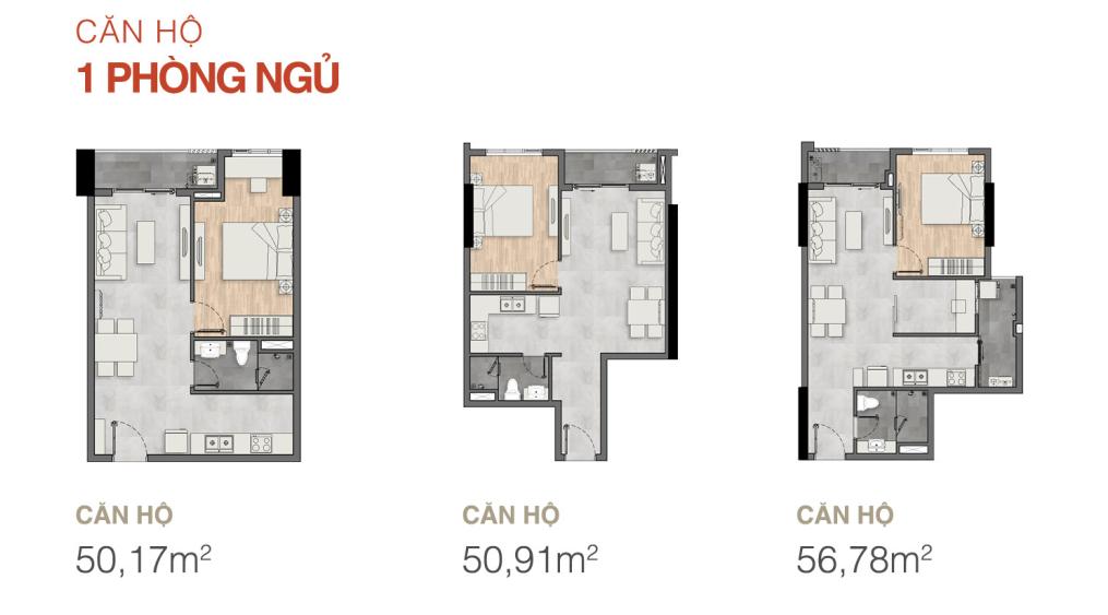 layout 1pn