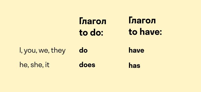 Глагол to have в Present Simple