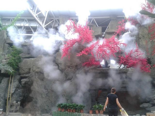 Máy phun sương giúp tạo cảnh quan đẹp cho quán cafe