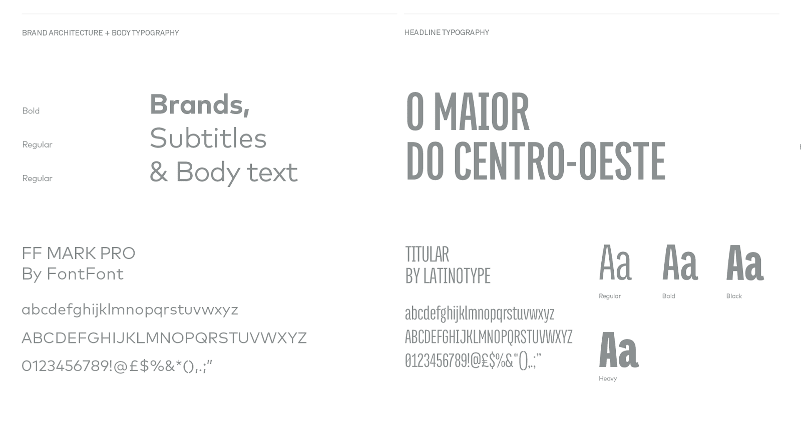Page from the Brand Identity Manual for the Goias Soccer Team