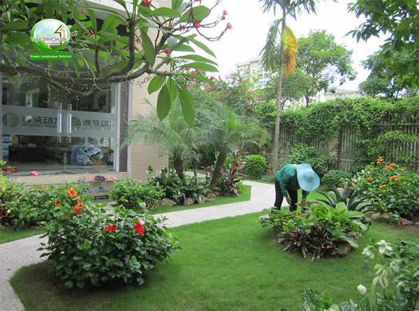 Ảnh có chứa cỏ, ngoài trời, xanh lục, tòa nhà  Mô tả được tạo tự động